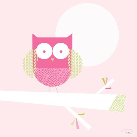 One Little Owl Canvas Art by Oopsy Daisy