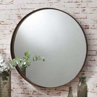 Antlia Mirror
