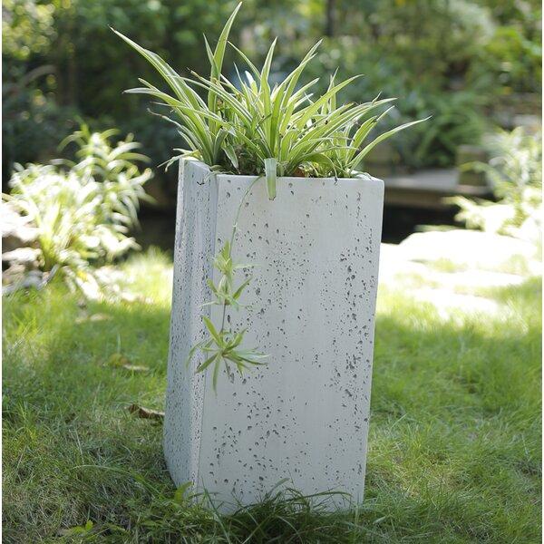 Modern Square Concrete Pot Planter by Kasamodern