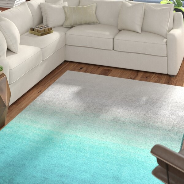 Bierman Hand-Tufted Turquoise/Gray Area Rug by Mercury Row