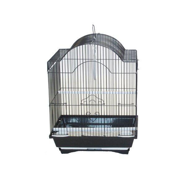Opus Cornerless Round Top Shape Bird Cage by Tucker Murphy Pet