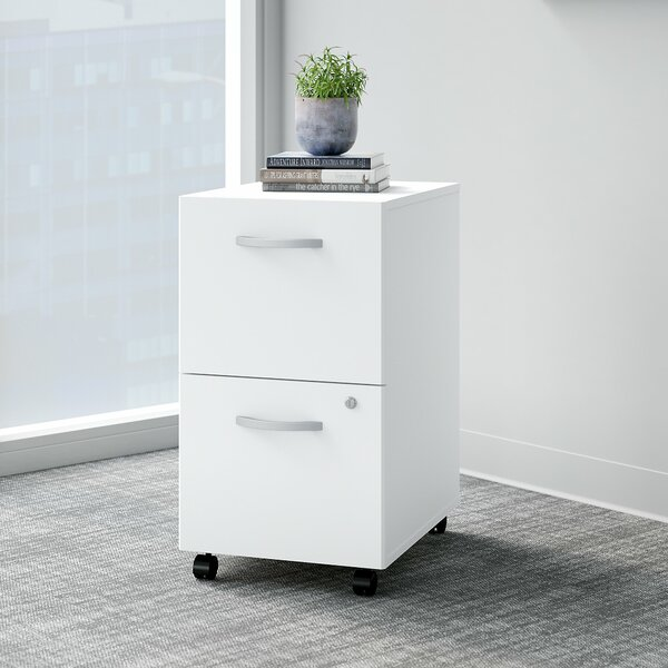 Easy Office 2 Drawer Mobile Vertical Filing Cabinet