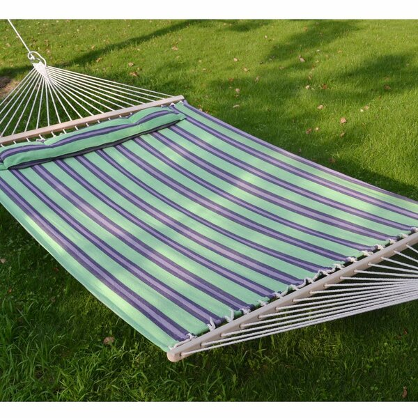 Lenwood Double Tree Hammock by Freeport Park