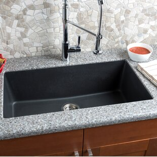 Extra Large Kitchen Sinks | Wayfair