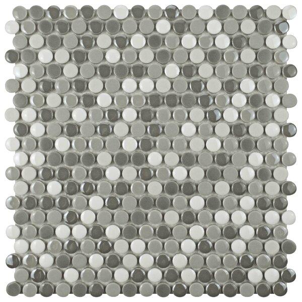 Tucana 0.59 x 0.59 Porcelain Mosaic Tile in Gray/White by EliteTile