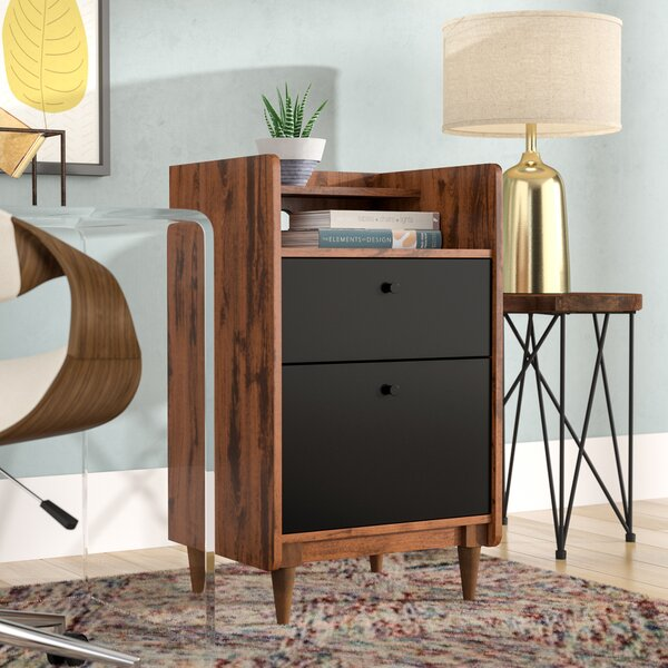 Gamma 2 Drawer Vertical Filing Cabinet by Ivy Bronx