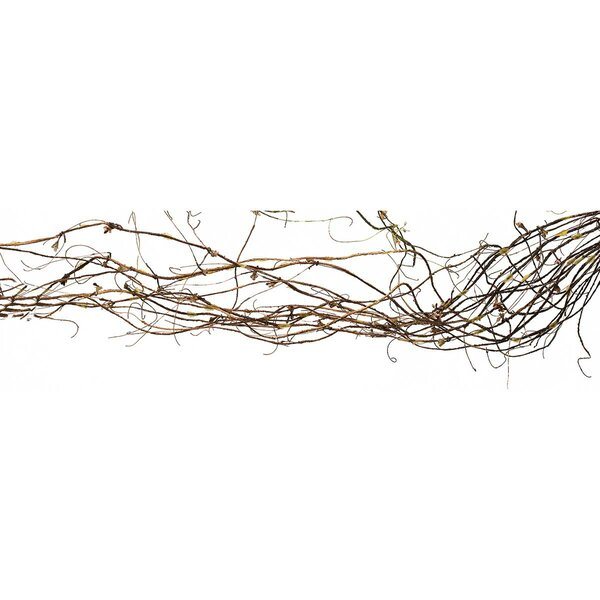 Twig Garland by Union Rustic