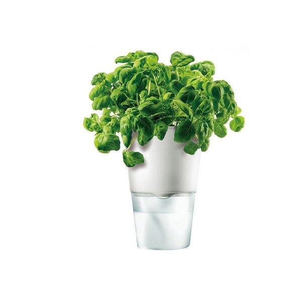 Self-Watering Composite Pot Planter by Eva Solo North America