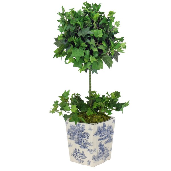 Floor Ivy Topiary in Ceramic Pot by Jane Seymour Botanicals
