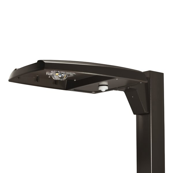 Prevail 163 Watt Outdoor LED Street Light by Cooper Lighting