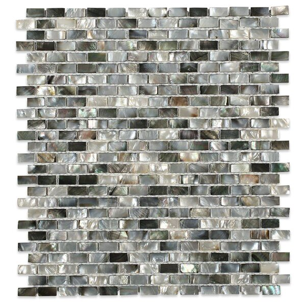 Donegal .79 x .39 Glass Pearl Shell Mosaic Tile in Gray by Splashback Tile