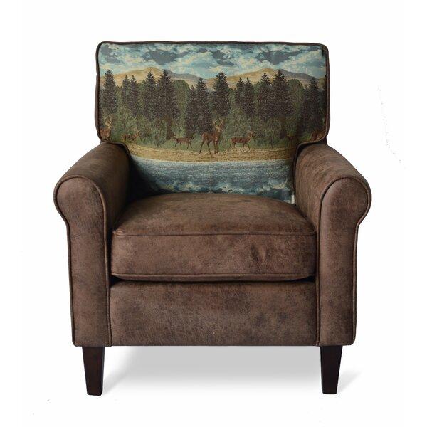 Springer Armchair by Loon Peak