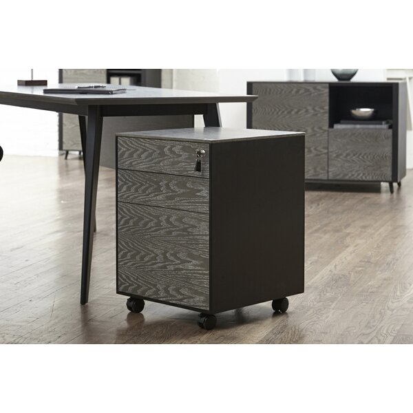 Francella 3-Drawer Mobile Vertical Filing Cabinet