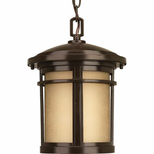 Affordable Chamberlain Traditional 1-Light Hanging Lantern By Bloomsbury Market