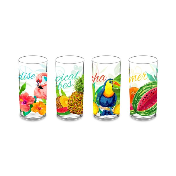 Pinyon 4 Piece 19 oz. Acrylic Every Day Glasses Set by Bay Isle Home