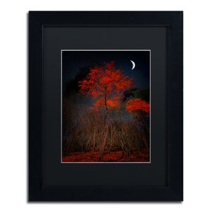 'The Why' by Philippe Sainte-Laudy Framed Photographic Print by Trademark Fine Art