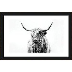 'Portrait of a Highland Cow' by Dorit Fuhg Print by Mercury Row