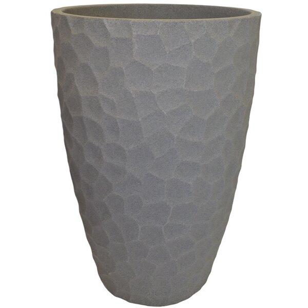 Madelynn Modern Plastic Pot Planter by Ebern Designs