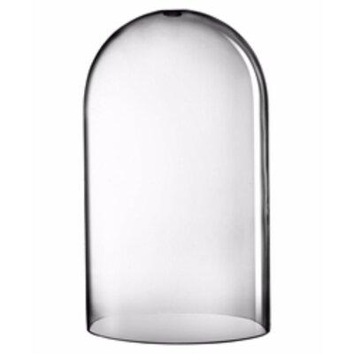 Charlton Home Charlton Home Riedel Glass Cloche Dome Terrarium Cg197072 From Wayfair Shefinds