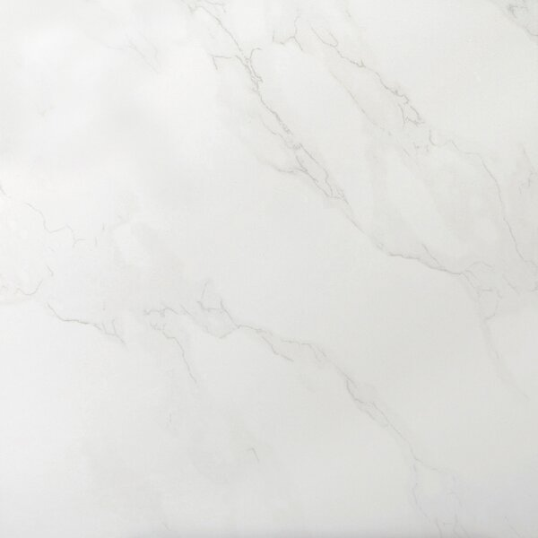 Paladino 24 x 24 Porcelain Field Tile in Albanella by Emser Tile
