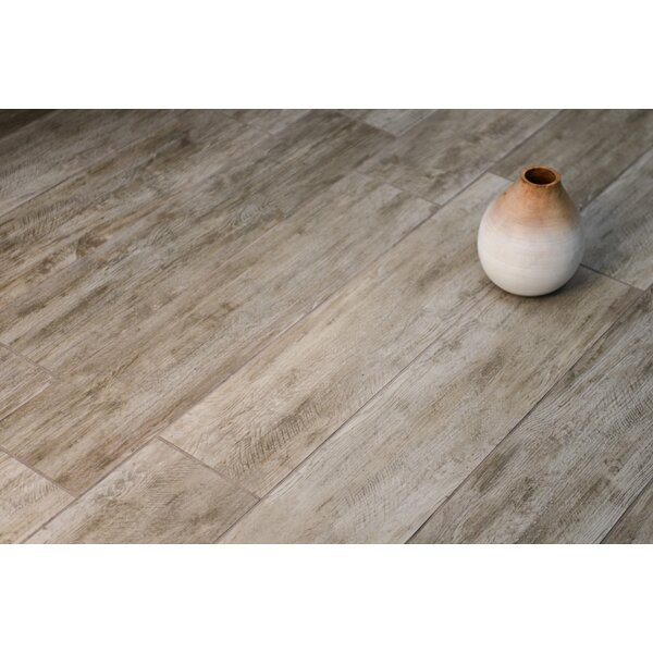 Santa Monica 8 x 24 Porcelain Wood Tile in Pico by Grayson Martin