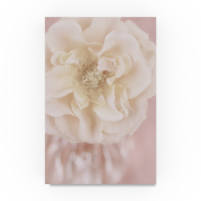 'Rose Gold' Photographic Print on Wrapped Canvas