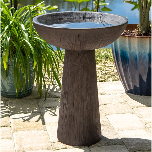 Angelia Garden Outdoor Birdbath by Millwood Pines