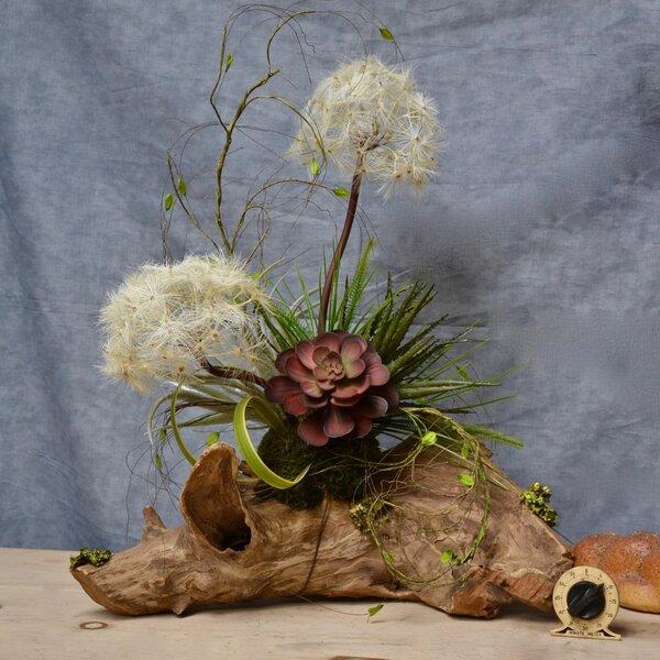 Dandelions & Succulents Centerpiece by Bloomsbury Market
