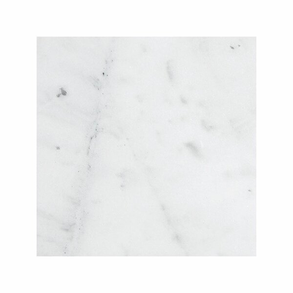Verona Marble 18 x 18 Stone Tile in Bianco Honed by Parvatile
