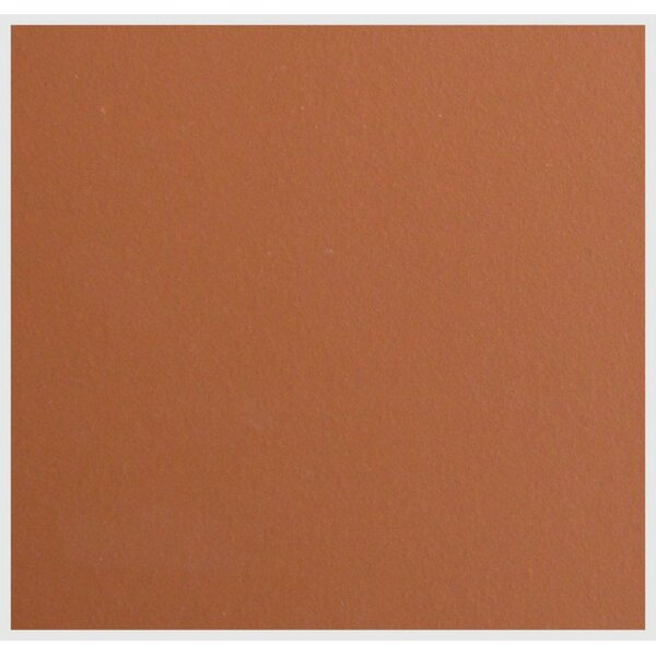 11.88 x 11.75 Terracotta Field Tile in Light Red by Legion Furniture
