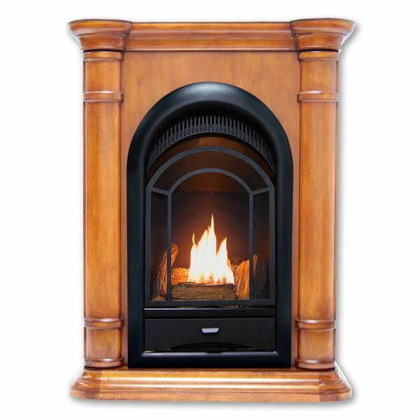 Home & Garden Heating Vent Free Propane/Natural Gas Fireplace