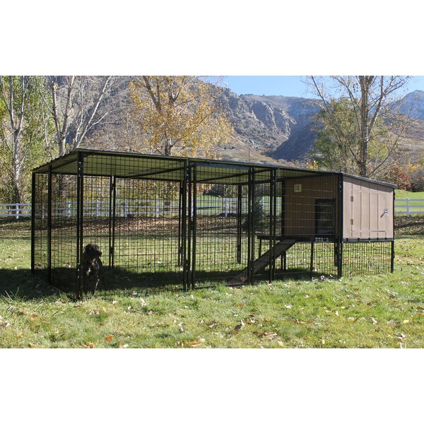 Belle Castle Run Metal Yard Kennel by Tucker Murphy Pet