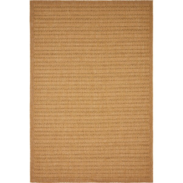 Auckland Light Brown Indoor/Outdoor Area Rug by Trent Austin Design