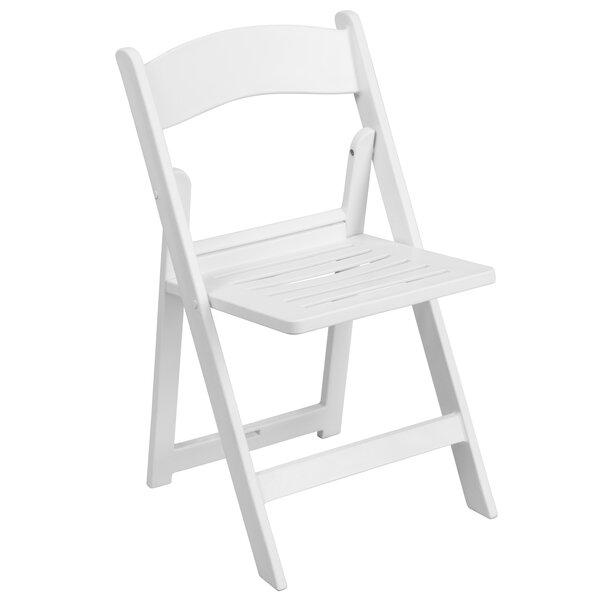 Laduke Resin Folding Chair by Symple Stuff