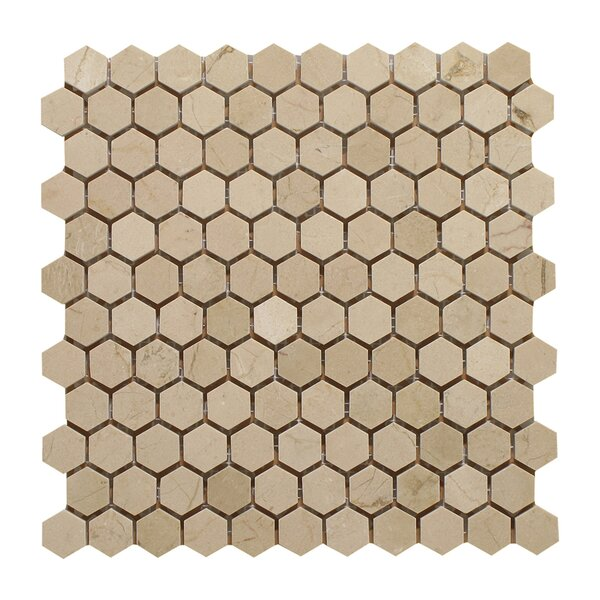 Crema Marfil 1 Honey Comb Polished Mosaic Tile by Seven Seas