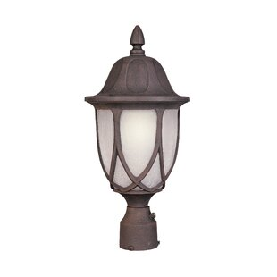 Bargain Newburg 1-Light Lantern Head By Alcott Hill