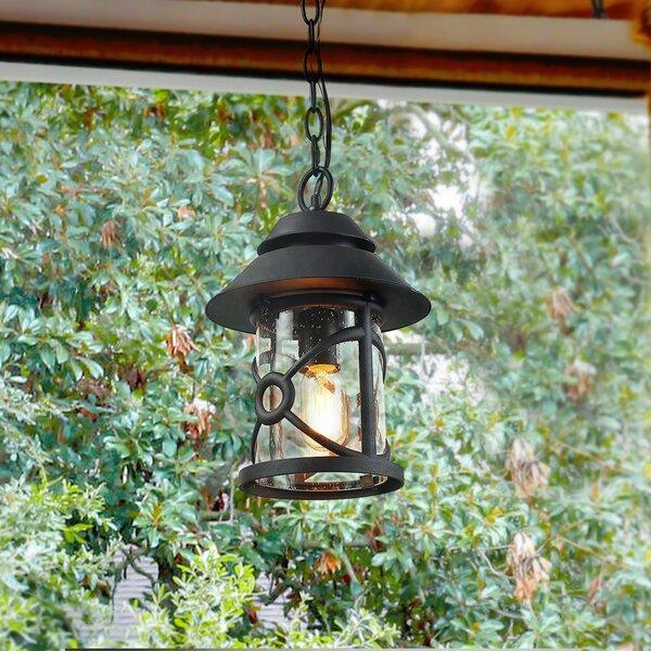 Warkentin 1-Light Outdoor Hanging Lantern by Breakwater Bay