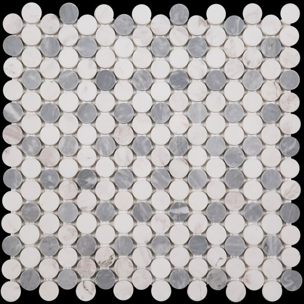 Penny Round Bianco Dolomite Honed 12 x 12 Marble Mosaic Tile in Bardiglio by Ephesus Stones