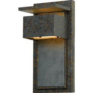 Cohoba 1-Light Outdoor Wall Lantern By Trent Austin Design Outdoor Lighting
