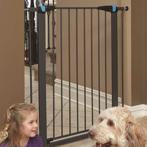 Expands Glow Stripe Pet Gate by Midwest Homes For Pets