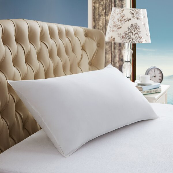 Alt Down Polyfill Pillow (Set of 2) by Pur Luxe