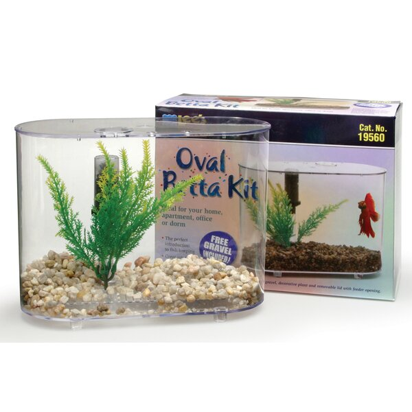 Mini Oval 0.75 Gallon Aquarium Betta Kit by Lees Aquarium & Pet