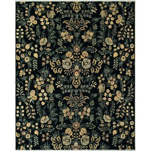 Rodrigez Hand-Knotted Wool Black Area Rug By Astoria Grand