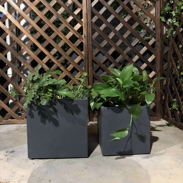 Garcia Square 2-Piece Planter Box Set by Williston Forge
