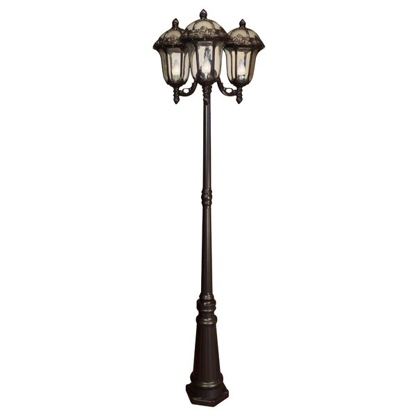 Rose Garden 3-Light Lantern Head by Special Lite Products