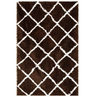 Best Reviews Hand-Woven Cocoa/Brown Area Rug By Affinity Linens