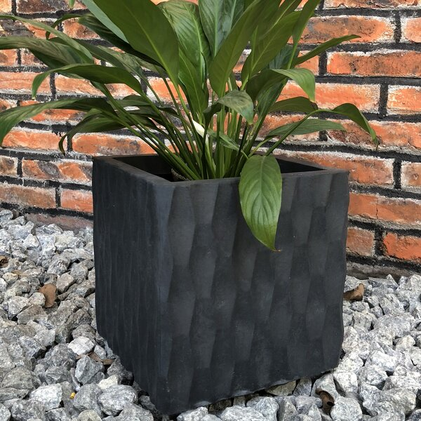 Khan Rough Surface Cube Planter Box by Wrought Studio