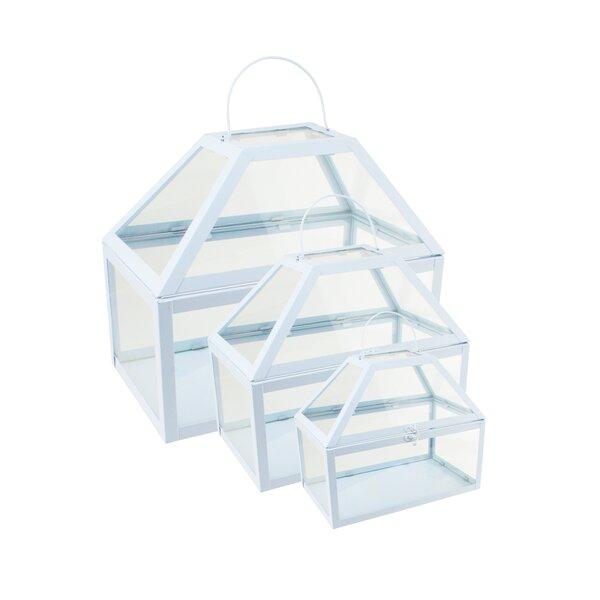 3-Piece Glass Terrarium Set by Northlight Seasonal