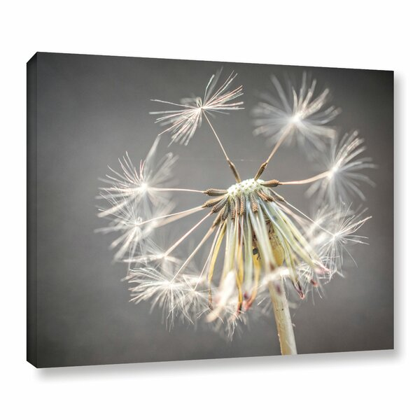 Hanging on Photographic Print on Wrapped Canvas by Alcott Hill