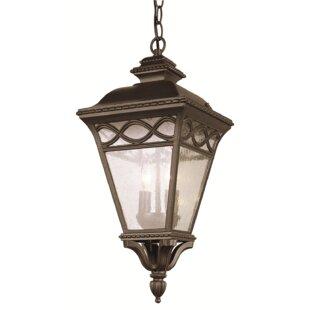 3-Light Outdoor Hanging Lantern By TransGlobe Lighting Outdoor Lighting